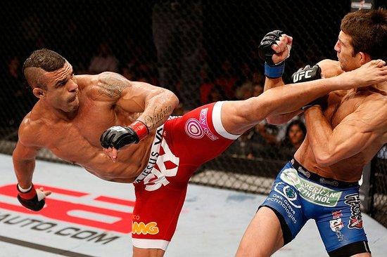 盘点UFC半年5大选手 贝尔福特连续KO扫阴霾