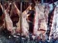 视频:阿根廷烤肉名不虚传 价高终敌不过物美