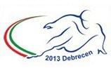 2013年短道世锦赛