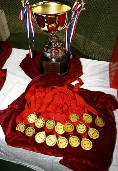 中央国家机关网球团体赛闭幕 体育总局夺冠