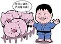 漫画体坛:佟文放心吃猪肉了?