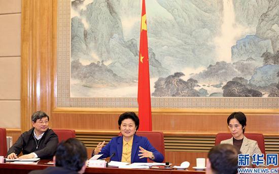 刘延东:中国足协换届是新起点 振兴中国足球