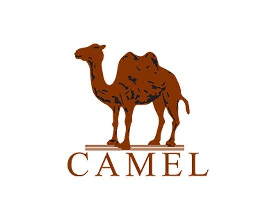 骆驼户外标识logo