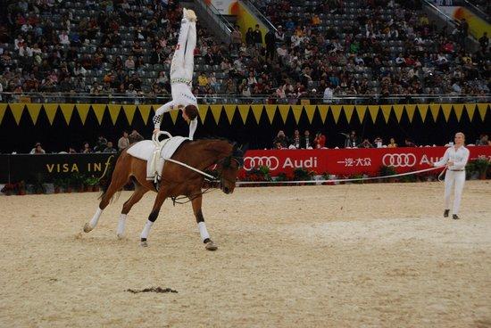 马背体操世界冠军卢瑟:中国马术潜力无穷