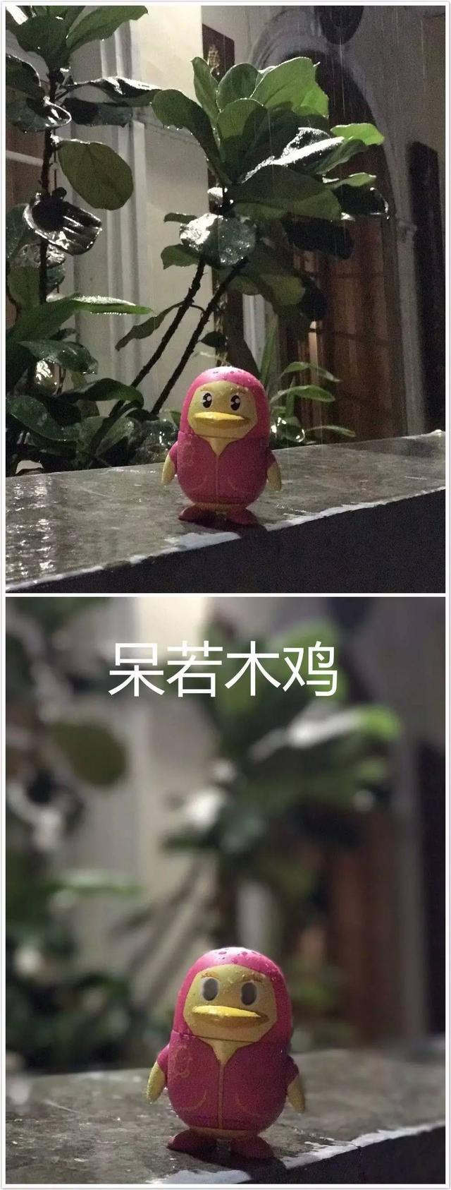 """特步企鹅跑-广州站遇""""天鸽"""" 佩妮大雨中卖萌"""