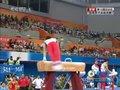视频:水鸟寿司鞍马并非强项 得分13.9