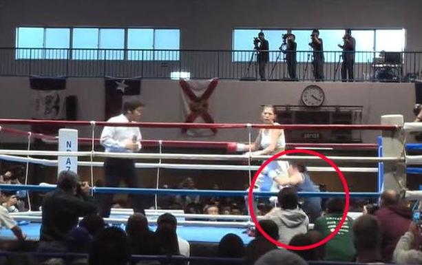 吓尿!日本一美女模特13秒KO中国职业拳手