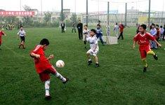 校园足球存危机 学校缘何拒绝足球?