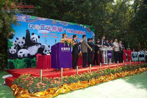 亚运熊猫团正式与游客见面 最长寿熊猫加入