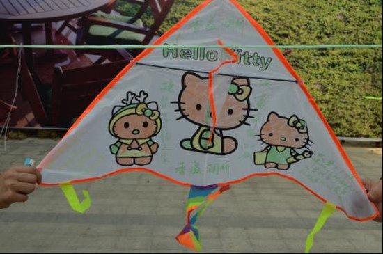 三角形风筝设计图纸