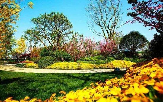 精工法式园林嵌入其中,以高大乔木,景观小乔,灌木,花灌木,花卉,草坪图片