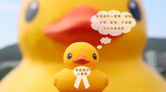一只大黄鸭累趴下千表情楼市小黄鸭站起来_频好万只料图片包图片
