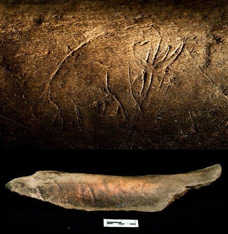 最古老艺术作品:来自冰河时期的骨刻画(图)