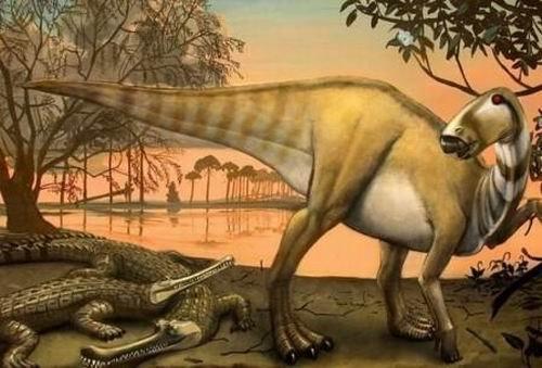 考古学家挖掘出恐龙时代巨大鳄鱼化石(图)