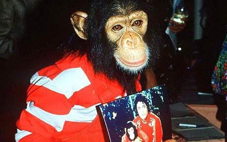 大量科学试验表明:黑猩猩也会欣赏音乐(图)