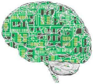 """揭秘人造大脑:""""蓝脑""""能和人脑媲美吗?"""