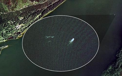 """谷歌地球看到""""尼斯湖水怪"""" 有人称是蛇颈龙"""