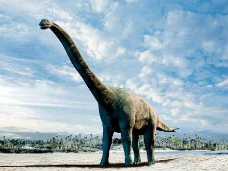科学家提出新理论:有毒海藻造成恐龙灭绝