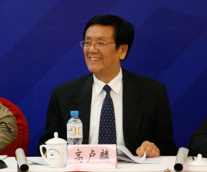高卢麟 中国互联网协会副理事长
