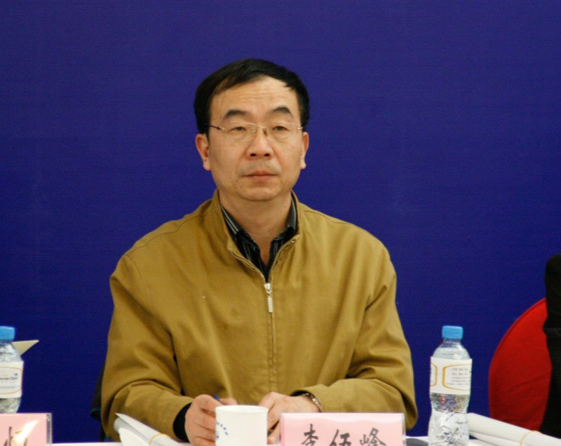 李伍峰 国新办网络局局长