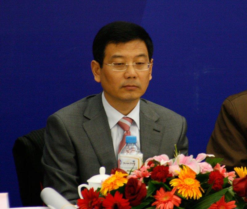 黄澄清 中国互联网协会副理事长