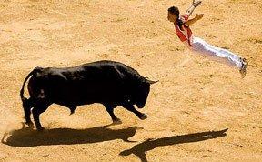 斗牛士空手戏牛:面对公牛腾空跃起