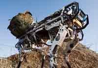 """美军派""""大狗""""机器人上战场"""
