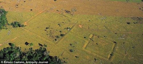 巴西发现古亚马逊文明遗迹 呈几何图形分布