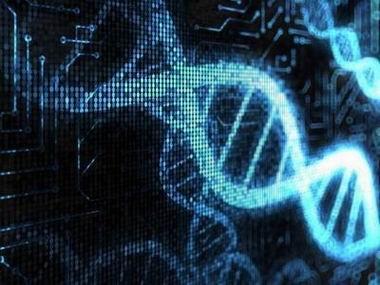 科学家发现人体8%遗传基因源自一种奇特病毒