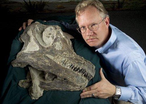 考古发现长颈恐龙新物种 不会咀嚼只能吞咽