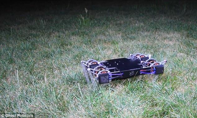 """美国大学研发会跑、草莓直播会跳、草莓直播会开门、草莓直播会爬墙的""""狂躁""""机器人"""