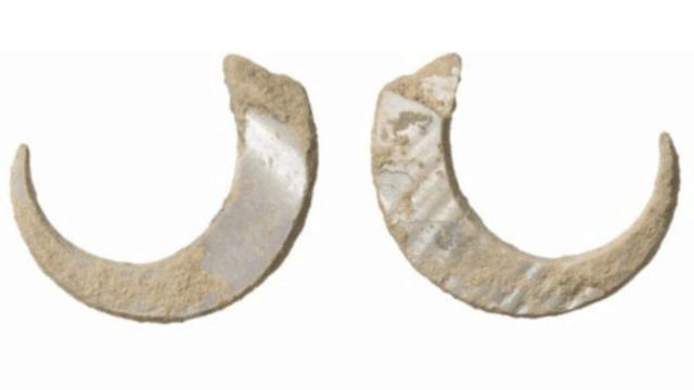 冲绳地区惊现最古老鱼钩 距今有23000年