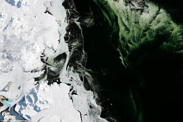 NASA卫星图像显示南极洲出现神秘绿色海冰