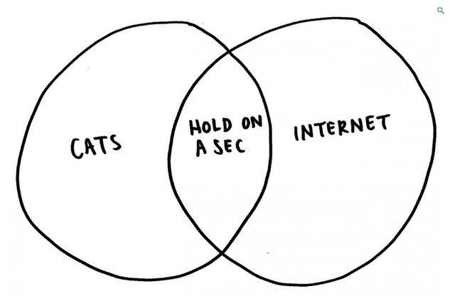 营销应该这样做:Tumblr五大赞助商帖子