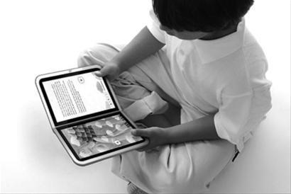 20%的美国人在读电子书