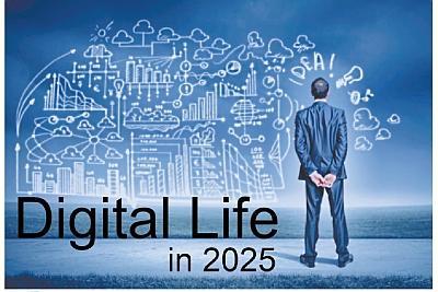 2025年的互联网怕什么?