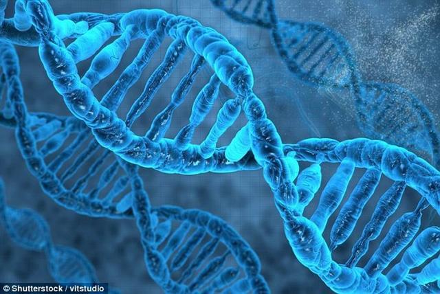 最新研究称社交恐惧症的形成与先天基因相关