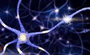 科学家积极研制读心设备 未来撒谎不可能啦