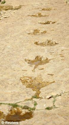 科学家首次在阿拉伯半岛发现恐龙足迹化石