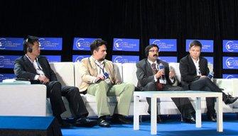 圆桌论坛:金砖国家与新兴市场圈地运动