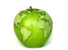 苹果或成立合资公司拿中国地图牌照