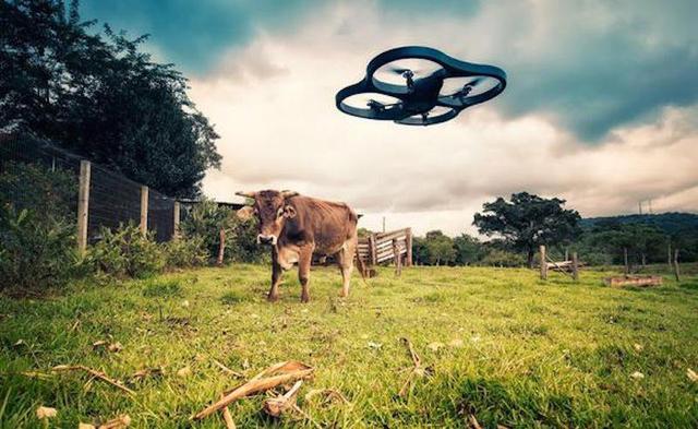无人机可能成为下一代农业工具 帮助农民放牛
