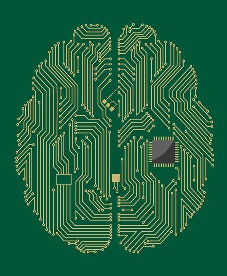 研究人员开发出更具人性化的大脑软件模型