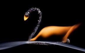 俄IT专家用火柴和火焰做微型画