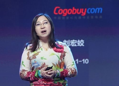 刘宏蛟:现在硬件制造业是去山寨化的好机会