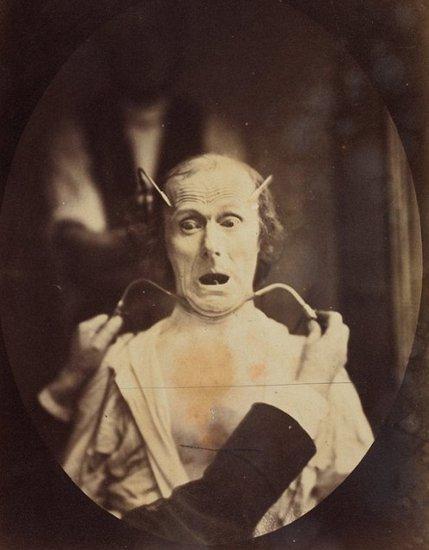 达尔文最后实验大令人:揭秘图片表情包头像图片可爱动漫大全大全可爱毛骨悚然的表情图片