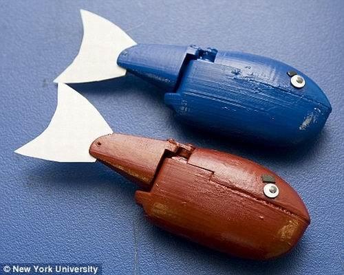 """美科学家发明奇特机器鱼 可冒充鱼群""""老大"""""""