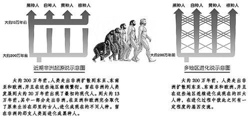 我们的祖先究竟是谁? 中国专家释疑人类起源