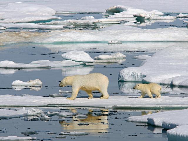 世界气象组织:2016年或为有记录以来最热年