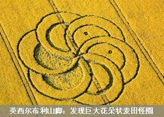 巨大花朵状麦田怪圈